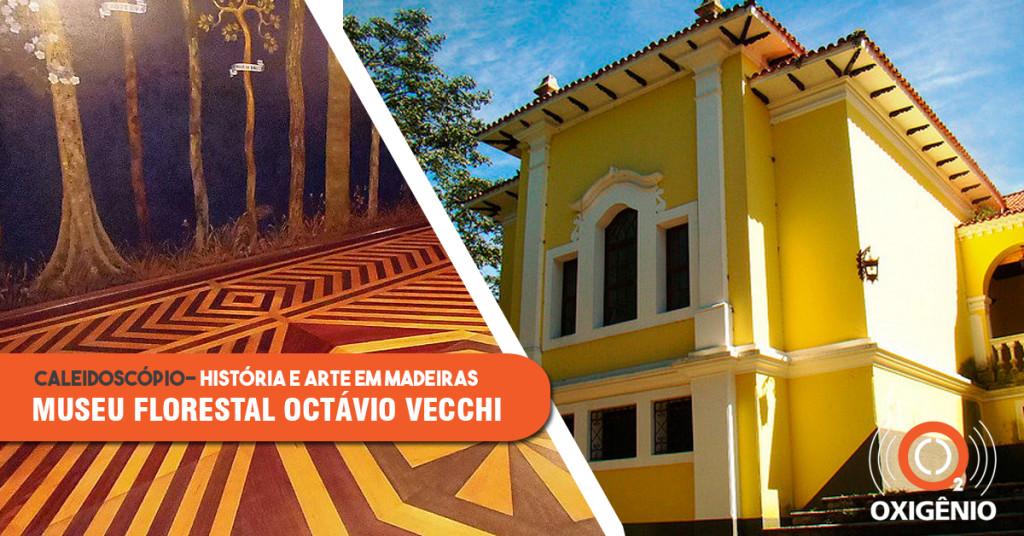 Museu Florestal Octávio Vecchi: onde madeira é ciência e arte