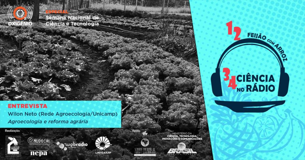 Agroecologia propõe repensar a cadeia de produção de alimentos