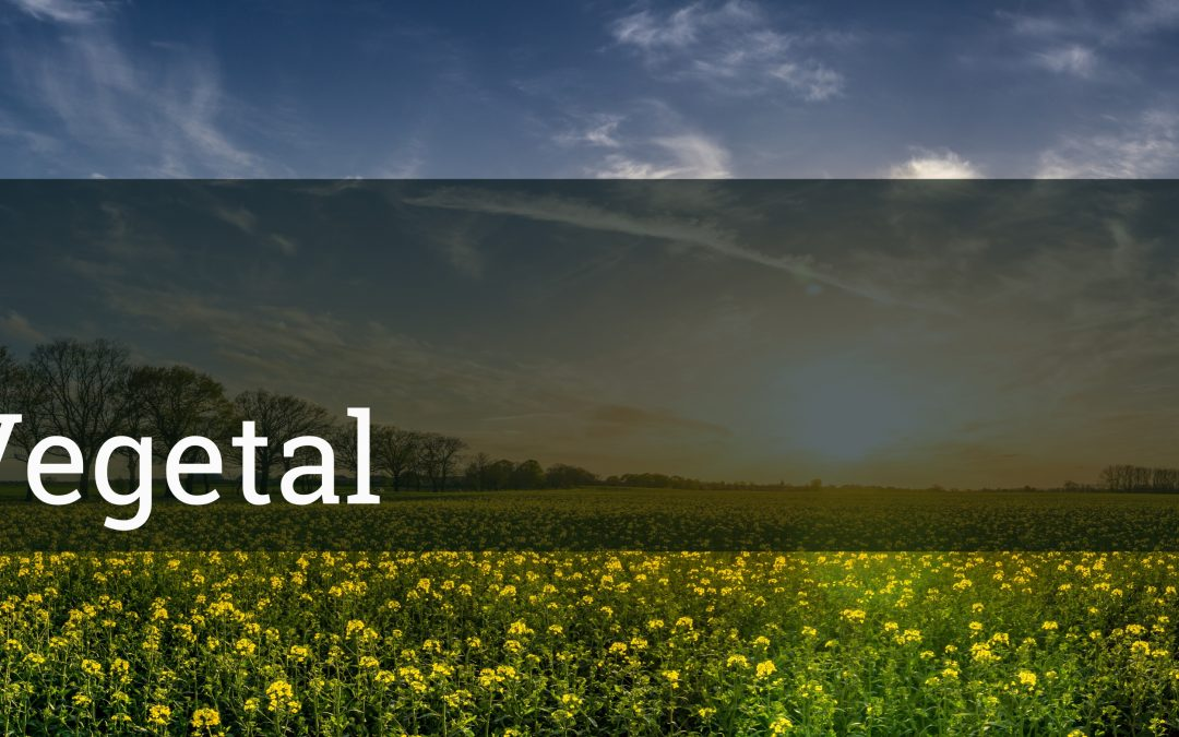#52 OxiLab: Defesa Vegetal