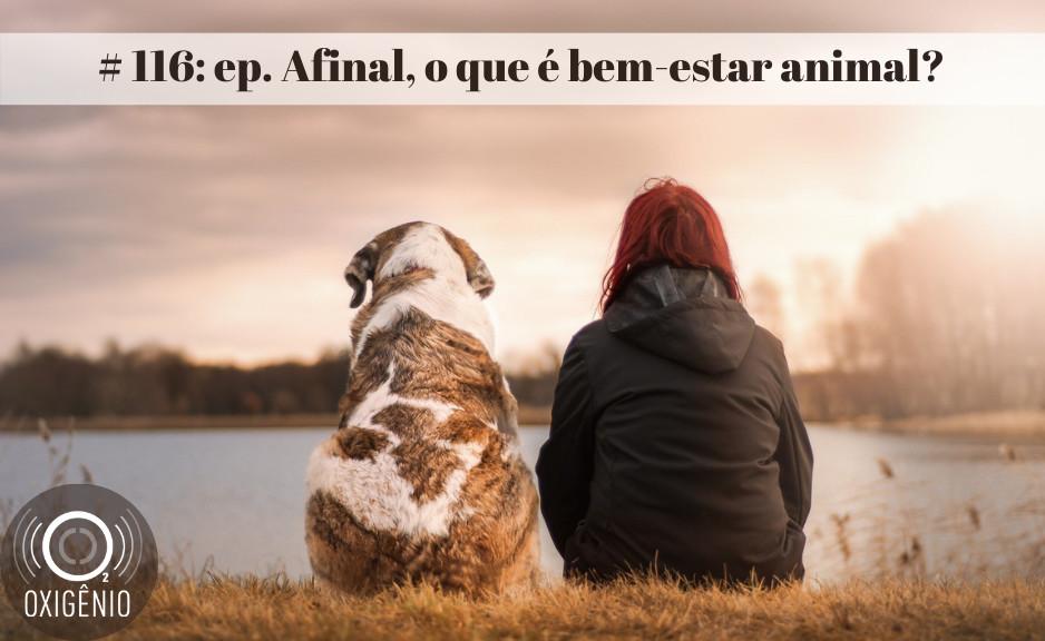#116 – Afinal, o que é bem-estar animal?
