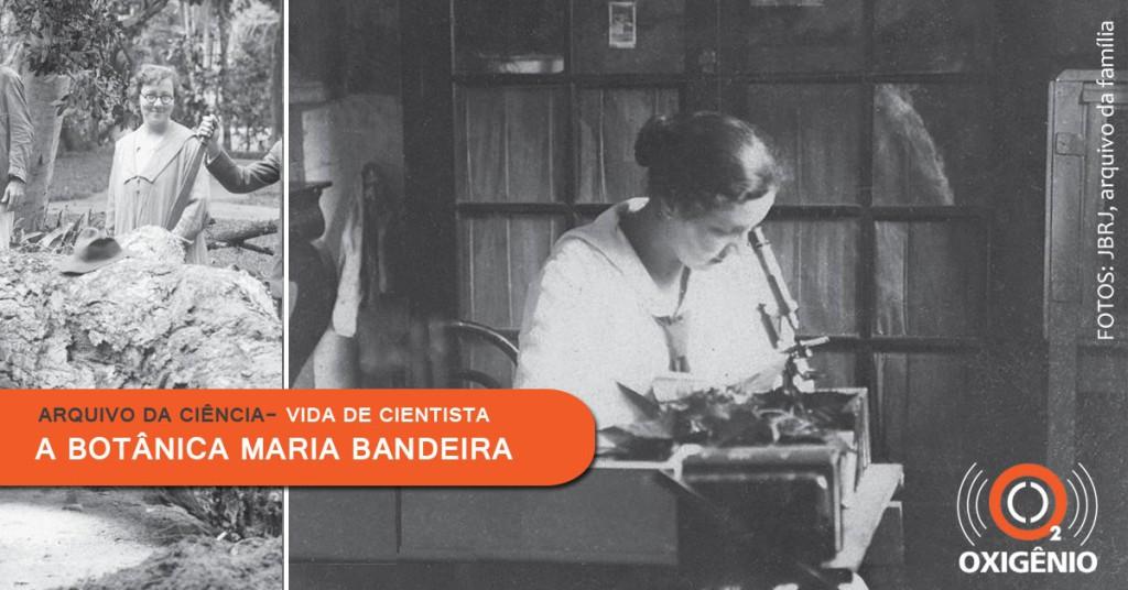 Maria Bandeira é uma das pioneiras na botânica brasileira