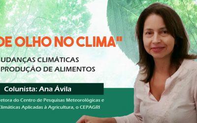 """Coluna """"De olho no clima"""" aborda a relação entre mudanças climáticas e produção de alimentos"""